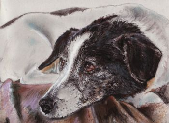 Pastel Print Jack Russell